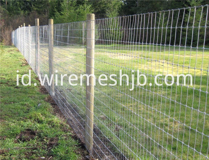 Cattle Fence Net