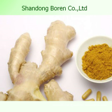 Black Ginger Price in China