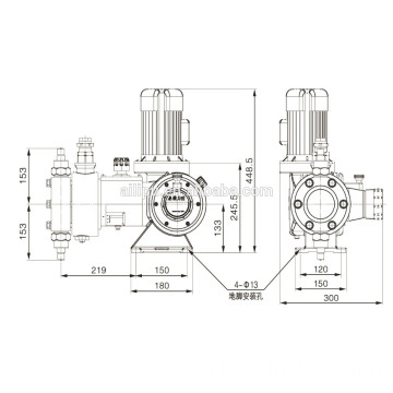 Chemical Hydraulic Diaphragm metering pump