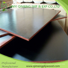 Supply Black Color Shuttering Plywood with Cheap Price