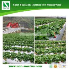 Биоразлагаемые Растительного Покрова В Сельском Хозяйстве Мульчирование Нетканый Материал