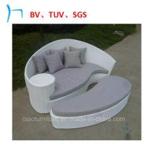 Lit de soleil de loisirs de meubles de patio de meubles extérieurs (FL015)