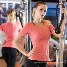 Sport & Fitness Clothing Women T-Shirt Quick Sweat