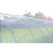 Anti insectos Net 100% HDPE con UV 5 años de detección de insectos