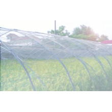 Anti Insect Net 100% HDPE avec UV 5 ans Insect Screening