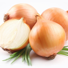 Cebolla fresca orgánica