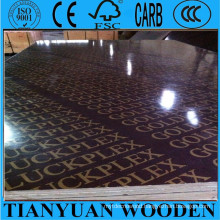 Goldluckplex Film Faced Plywood with Logo for Concrete Formwork