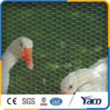 Projetos de gaiola de galinha, malha de arame hexagonal