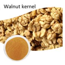 Pharmaceuticalprice organic Walnut kernel powder