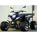 NEUES 250 CCM RACING QUAD EWG