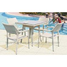 Tabla y silla al aire libre de mimbre del rotén (D519; S219)