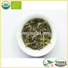 Organic Pai Mu Dan White Tea