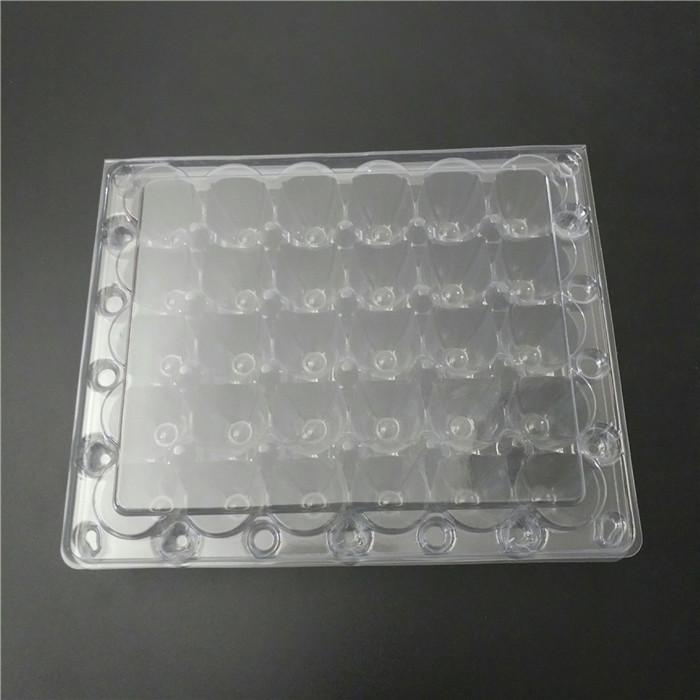 Plastic Quail Eggs Container