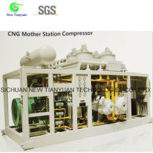 China Factory Price CNG Mother Station Compressor de gás natural