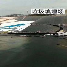 Plastic HDPE Geomembrane Waterproof Agriculture Liner
