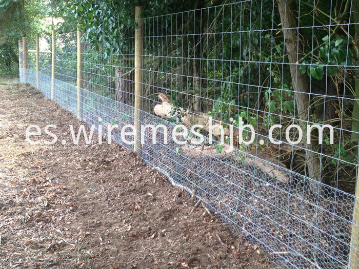 Woven Goat Fence