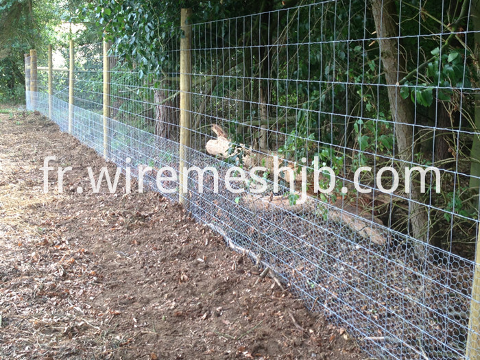 High Tensile Sheep Fence