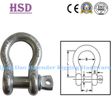 Us Type Drop Forged G2130 Bow Shackle with Screw Pin