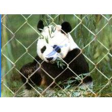 Heißer Verkauf Kettenglied Maschendrahtzaun für Tier (TS-E72)