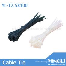 Attache de câble en nylon avec approbation RoHS (2,5 x 100 mm)