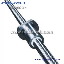 Dfu/ Sfu High Precision Ball Screw for Plastic Machine