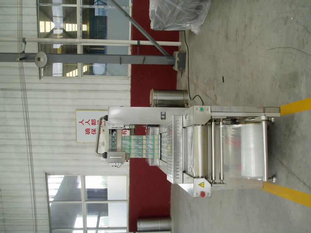 Beef Jerky Guarding Safety Vacuum Packing Machine