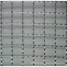Crimped Wire Mesh/Stainless Steel/Pvccoated