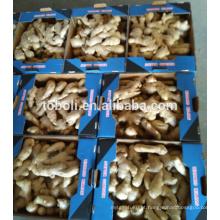 Mercados europeus venda quente chinês ar seco gengibre