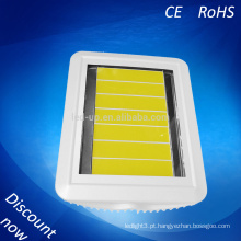 Venda quente 2015 100w COB LED Flood Light