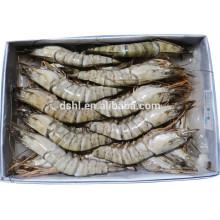 HL002 marisco congelado melhores marcas de camarão congelado com preço barato