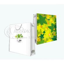 Bolsa de papel modificada para requisitos particulares 2013 de las compras del regalo (KG-PB071)