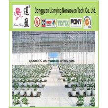 Growbag, grande usine de sacs de plantation d'arbres non tissés,