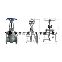 DIN F7 Cast Steel Rising Stem Gate Valve Pn4.0-6.4mpa