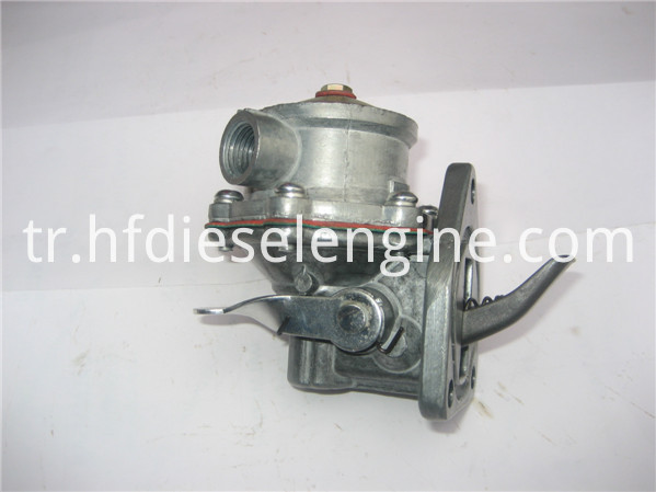 diaphragm type fuel pump