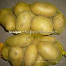 Свежий китайский картофель