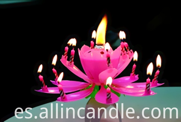 lotus birthday candle