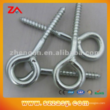 Made in China Hot DIP Galvanized Anchor Assembly Lifting Eye Bolt