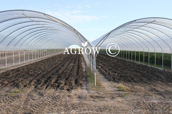 Tarım Greenhouse Hoop House