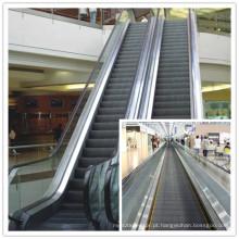 2013 CE Aprovado Inclinado Elevador (escada rolante e wallk em movimento) para Shopping Mall, Traffic Hub.