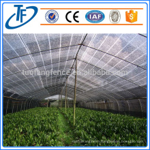 Flexible Windbreak Netting/Plastic Windbreak Net