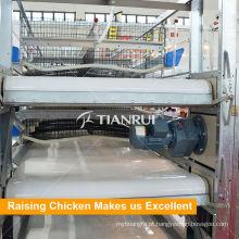 Sistema automático da remoção do estrume da gaiola de galinha da camada para o equipamento das aves domésticas