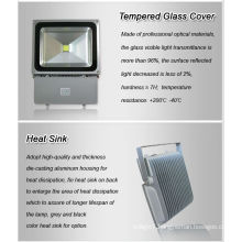 LED Light LED Outdoor Light 80W LED Floodlight