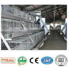 Автоматическая клетка из целлюлозы и инкубаторы для птицефабрик Poul-Tech