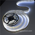 Blue Dream warna SMD3528 Led Strip light 12V dengan konektor