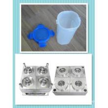 Injektions-Plastikvakuumschalen-Form-Form (12)