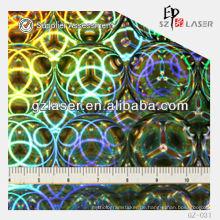 GZ-031, Kreismuster, Hologramm-Master-Scheibenplatte Laserdruck auf Metallblech