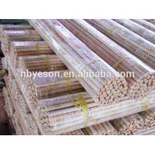 Punho de vassoura de madeira natural FACTORY