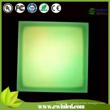 Brique changeante de couleur d'IP68 LED avec l'acier inoxydable