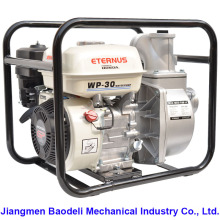Home Use Hydraulic Water Pump (WP30)