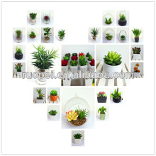 Lifelike high quality mini succulent for home decorative